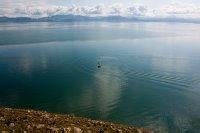 Սևանա լիճ, ձկնորսություն