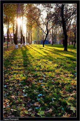 Երևանյան տեսարաններ - Օղակաձև այգի